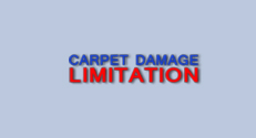 Carpet Damage Limitation Ads Campaign Case Study